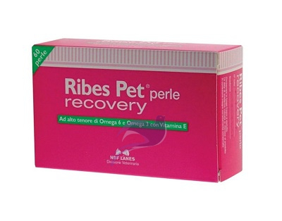 Ribes Pet Recovery 60 perle